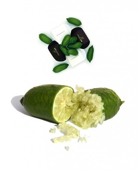 Finger Lime faustrime o a polpa bianca - box con 250 g di frutti - Finger Lime Italia