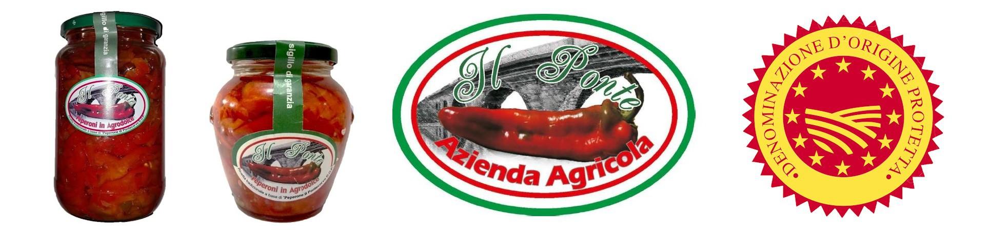 Peperone di Pontecorvo DOP in agrodolce - AZIENDA AGRICOLA IL PONTE